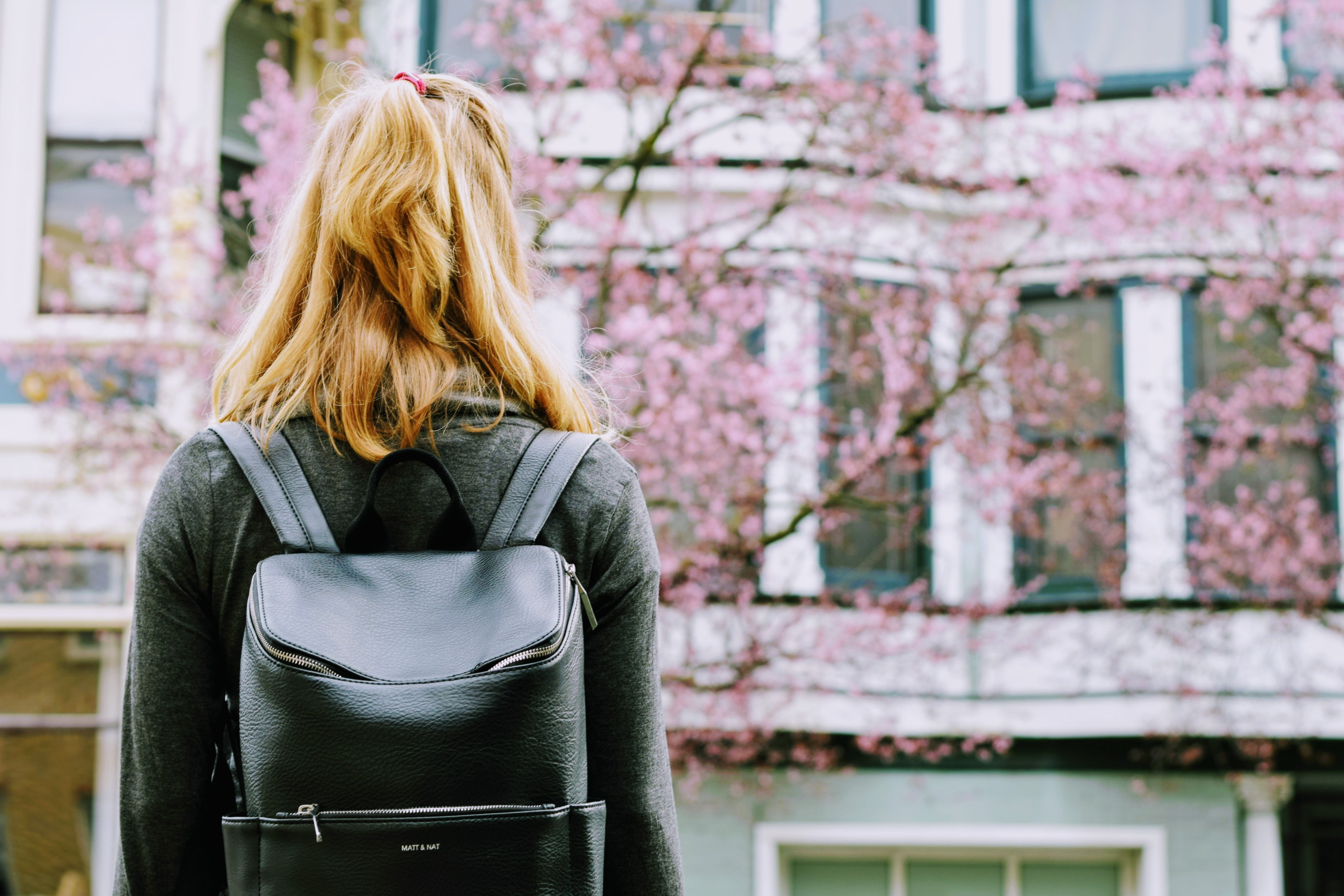 Nuove Partenze in Sakura